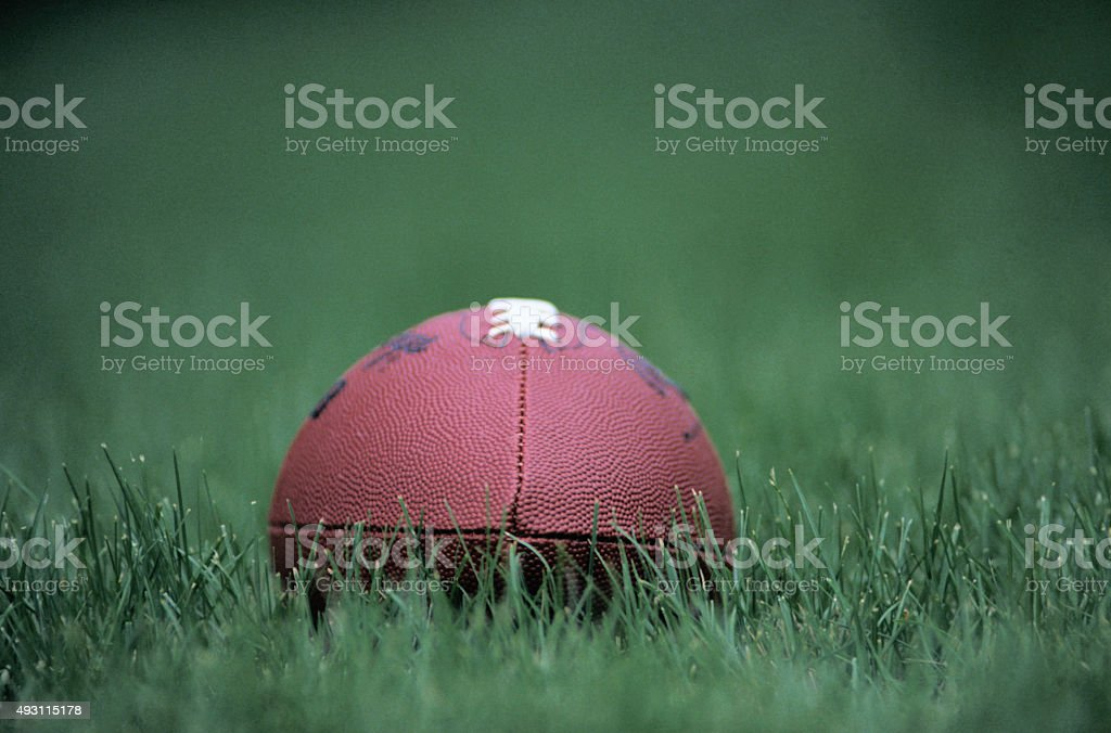 Rugby ball on a grass stock photo