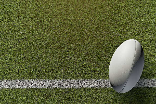 rugby ball on grass pitch - rugby ball stock photos and pictures