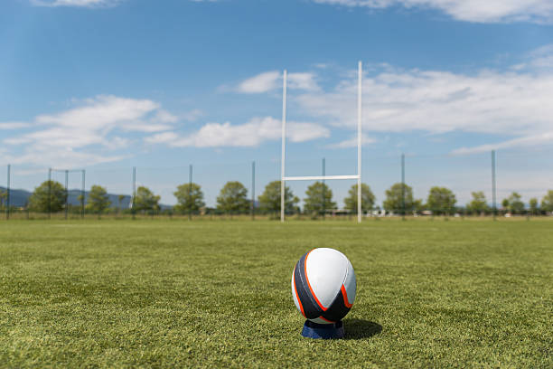 rugby ball on the field. - rugby ball stock photos and pictures
