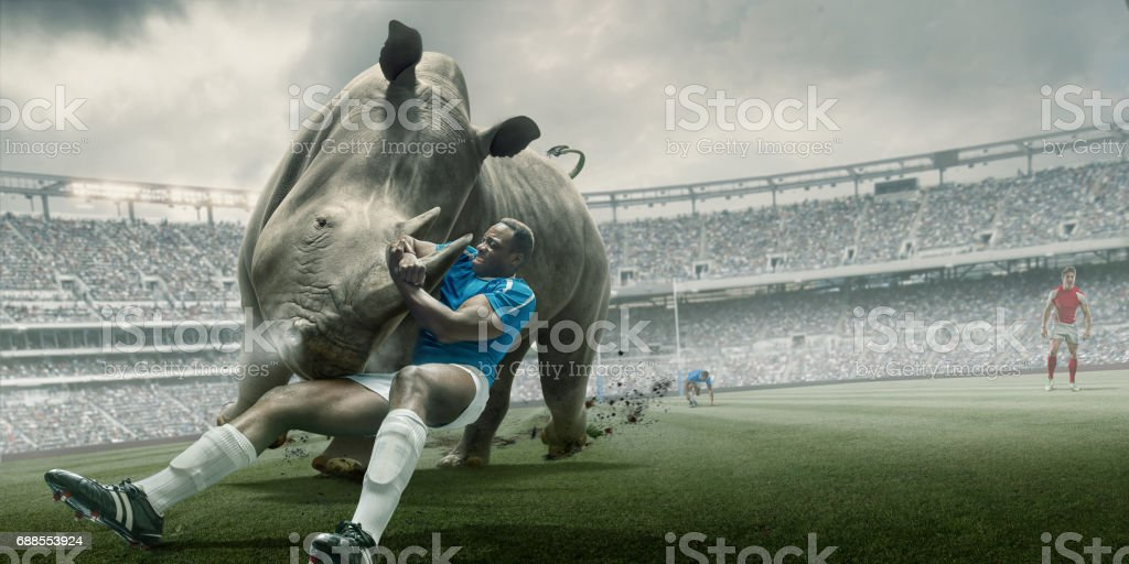 Rugby Player Tackling Rhino During Match in Outdoor Stadium stock photo