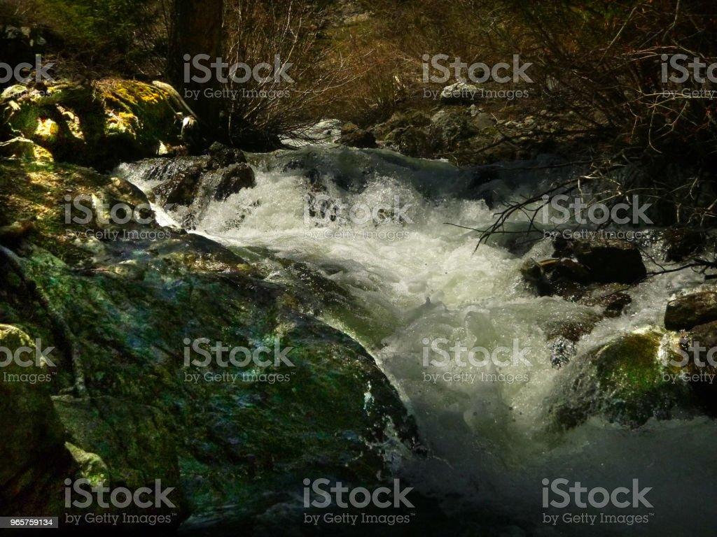 Ruige centrale Idaho - Royalty-free Boom Stockfoto