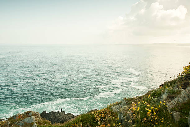 rugged cornish clifftop - cornwall stock pictures, royalty-free photos & images