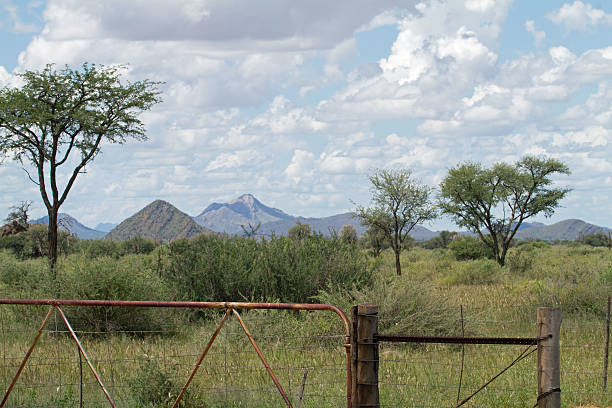 Rugged farm gate with mountains and cloudy sky stock photo