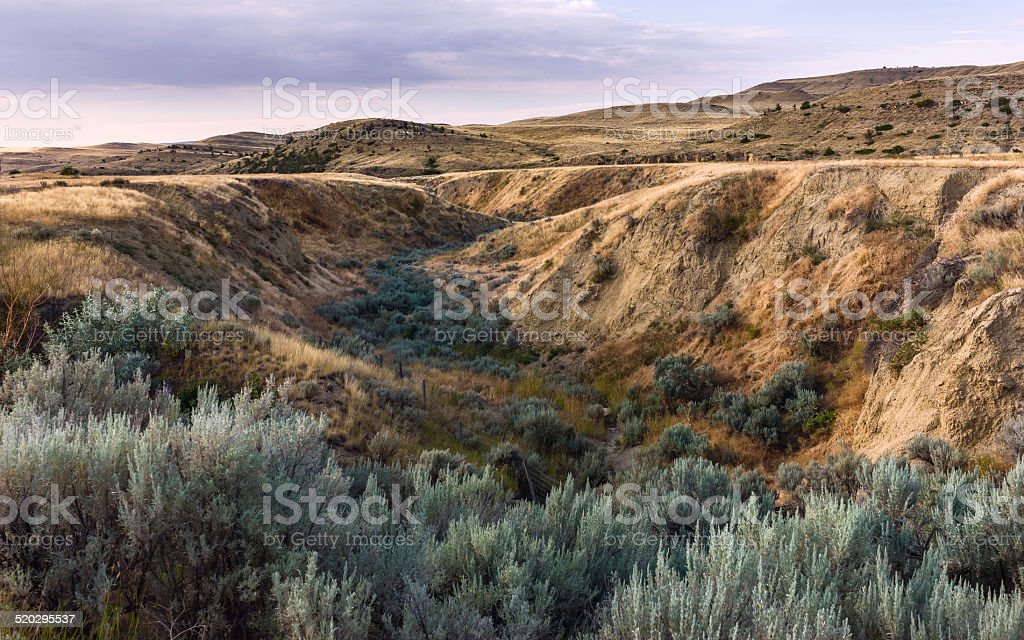 Rugged landscape near Billings, Montana, USA. stock photo