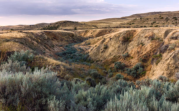 Rugged landscape near Billings, Montana, USA. stock photo