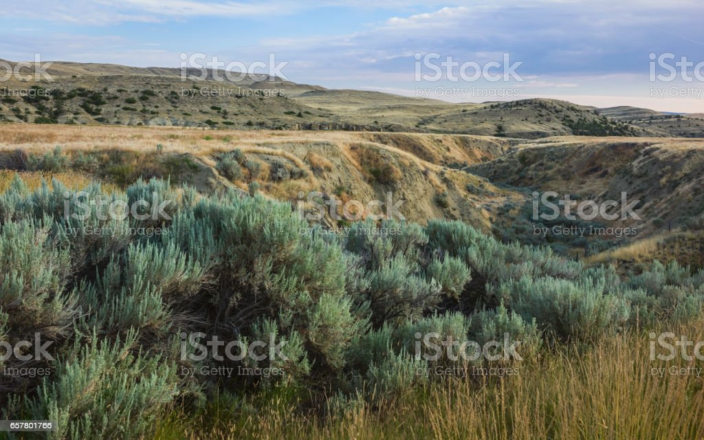 Rugged landscape of the prairie near Billings, Montana, USA. stock photo