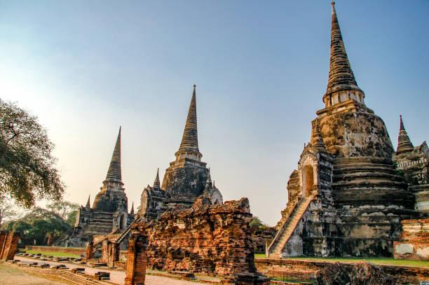 ayutthaya, tayland 'da wat mahathat 'ın harabeye. günbatımı alacakaranlık ile tayland landmark tarihi tapınak. - ayutthaya bölgesi stok fotoğraflar ve resimler