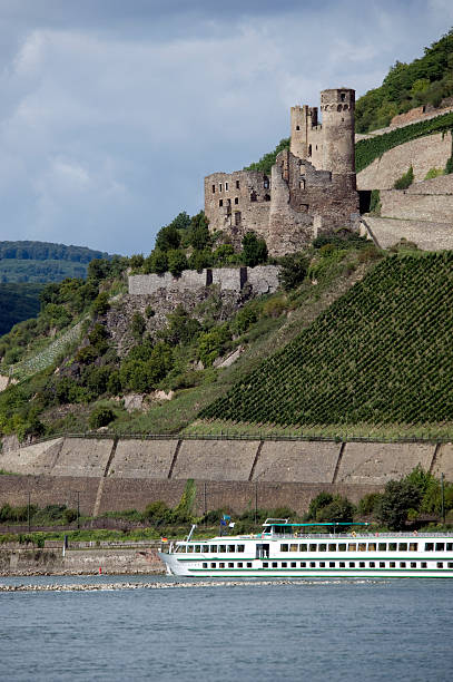 Ruine Ehrenfels, Germany Castle Ehrenfels on hill with vineyards ruine stock pictures, royalty-free photos & images