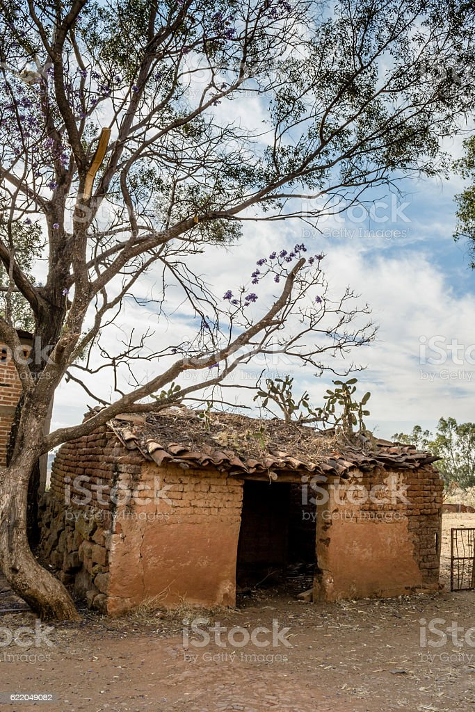 Ruined adobe house and tree stock photo