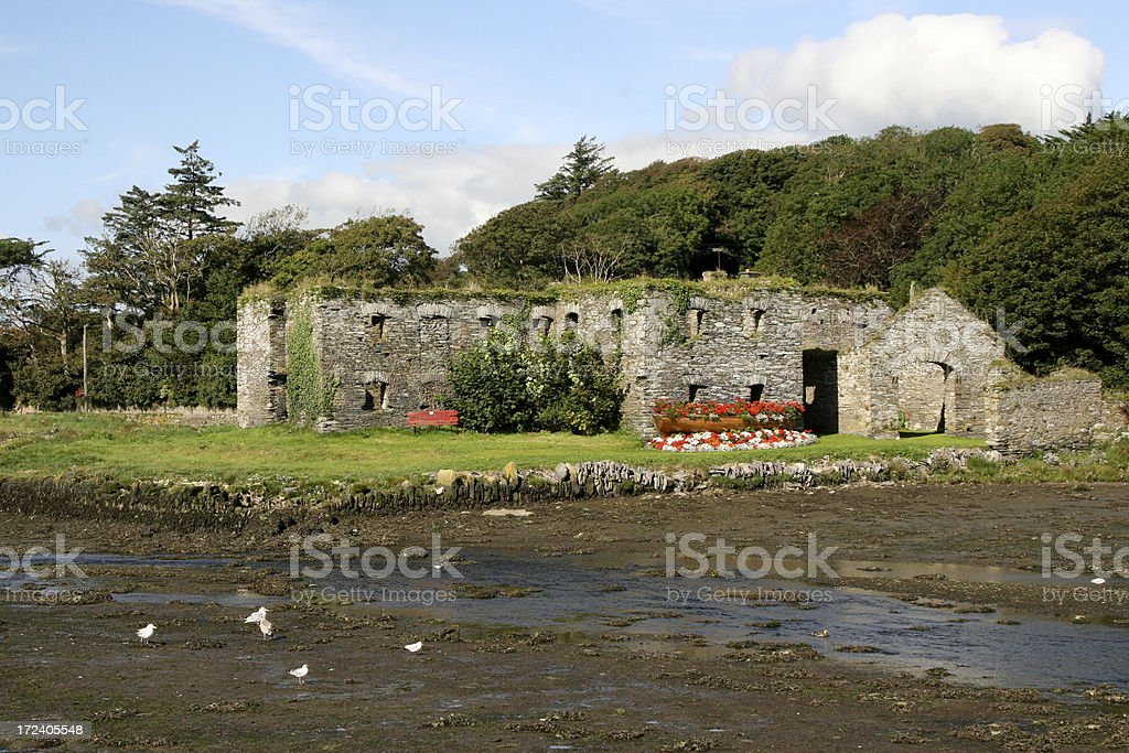 Ruined building, South West Ireland stock photo