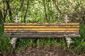 istock Ruined empty wooden bench in forest on sunny summer day 1250109947
