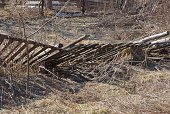 istock ruined fence from wooden planks overgrown with dry gray grass 1207336040