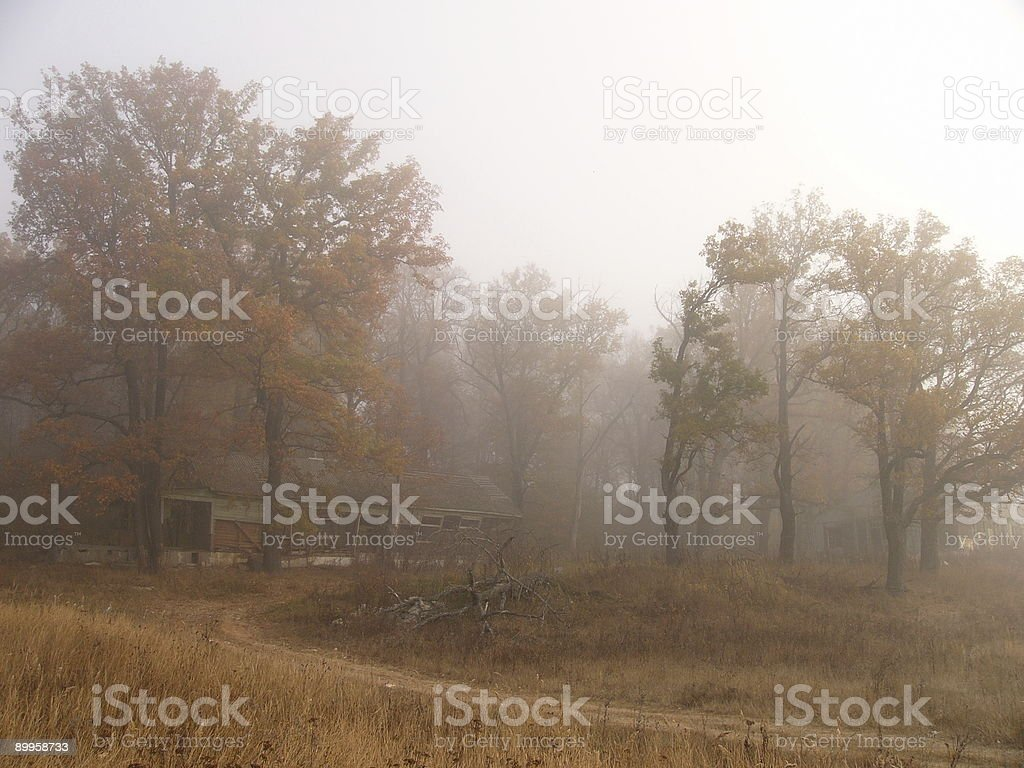 Ruins in fog royalty-free stock photo