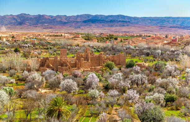 Ruins of a Kasbah in the Valley of Roses, Morocco stock photo