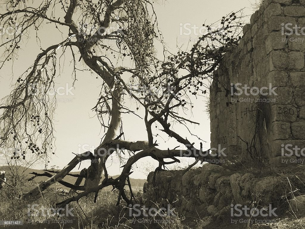 Ruins of Arab village royalty-free stock photo