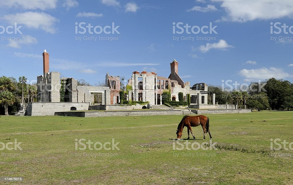 Ruins of Carnegie Mansion on Cumberland Island, Georgia royalty-free stock photo