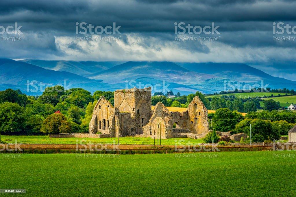 Ruinen der Hore Abbey – Foto