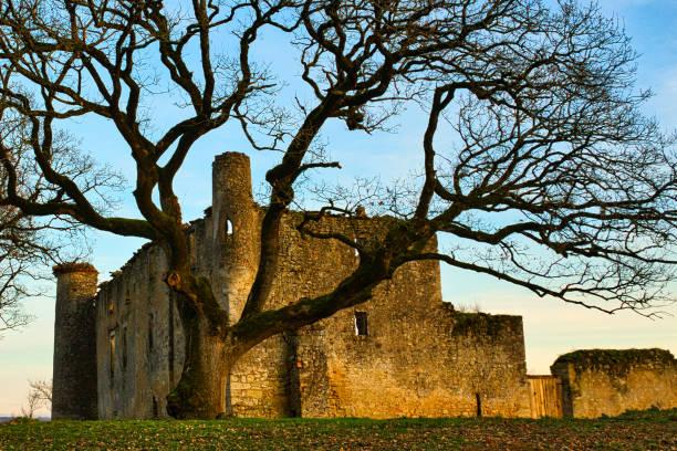 Ruins of Montfa Castle stock photo
