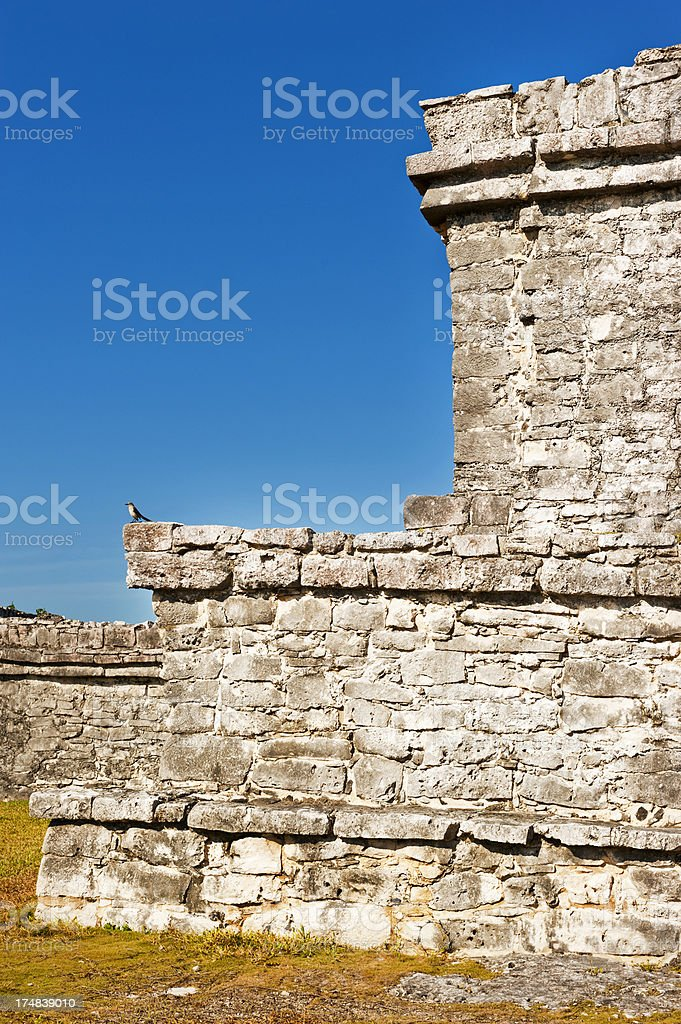 Ruins of Tulum royalty-free stock photo