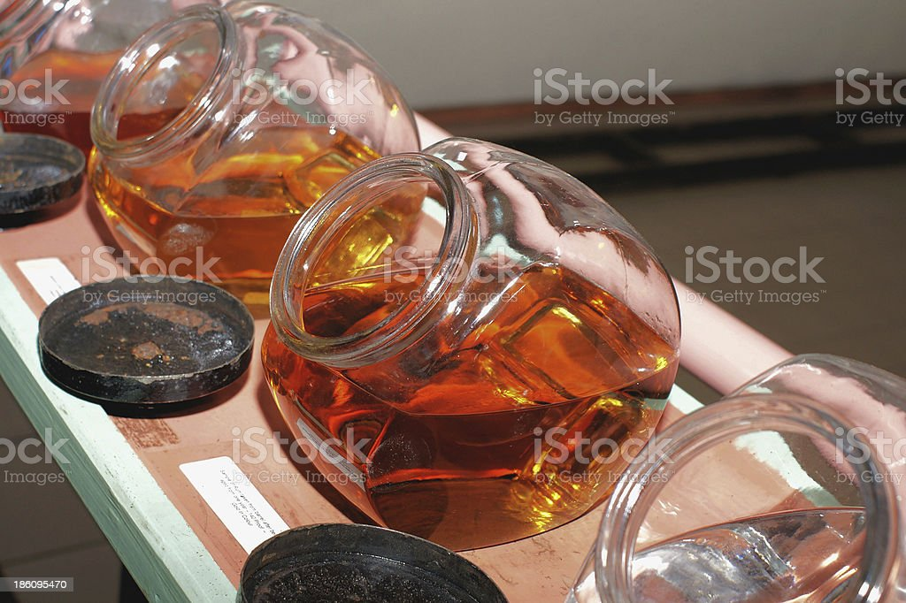 rumfactory stock photo