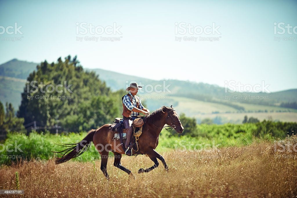 Run like the wind! stock photo
