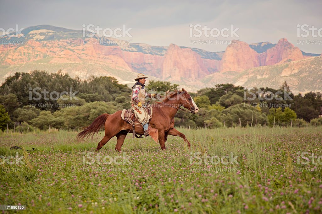 run stock photo