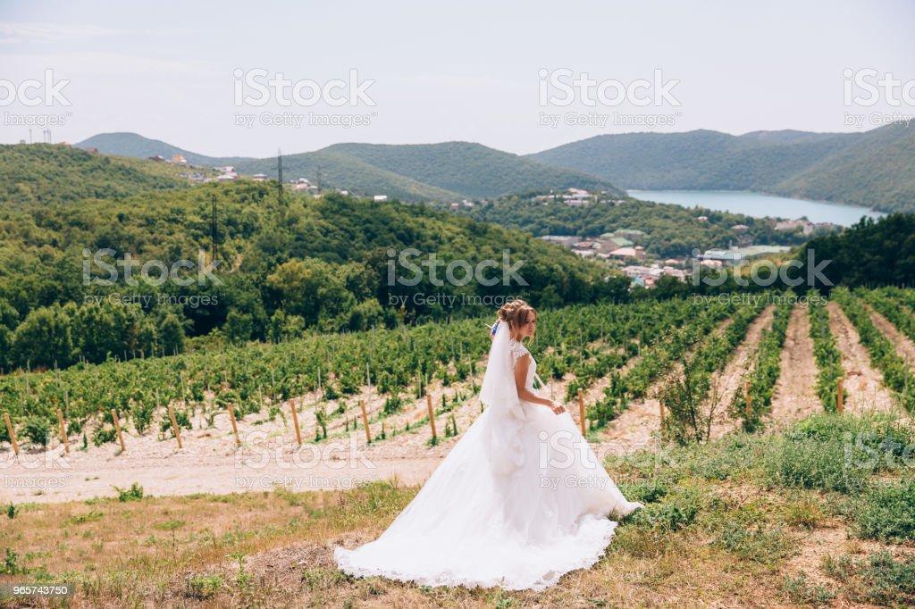 Een weggelopen bruid wandelingen in een verlaten gebied, wijngaarden en de bergen bewondert, en voelt gratis. Een jong meisje trok zich terug in de natuur - Royalty-free Architectuur Stockfoto