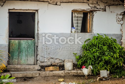 Poverty in Honduras. Rooster in front of falling apart house in small village.