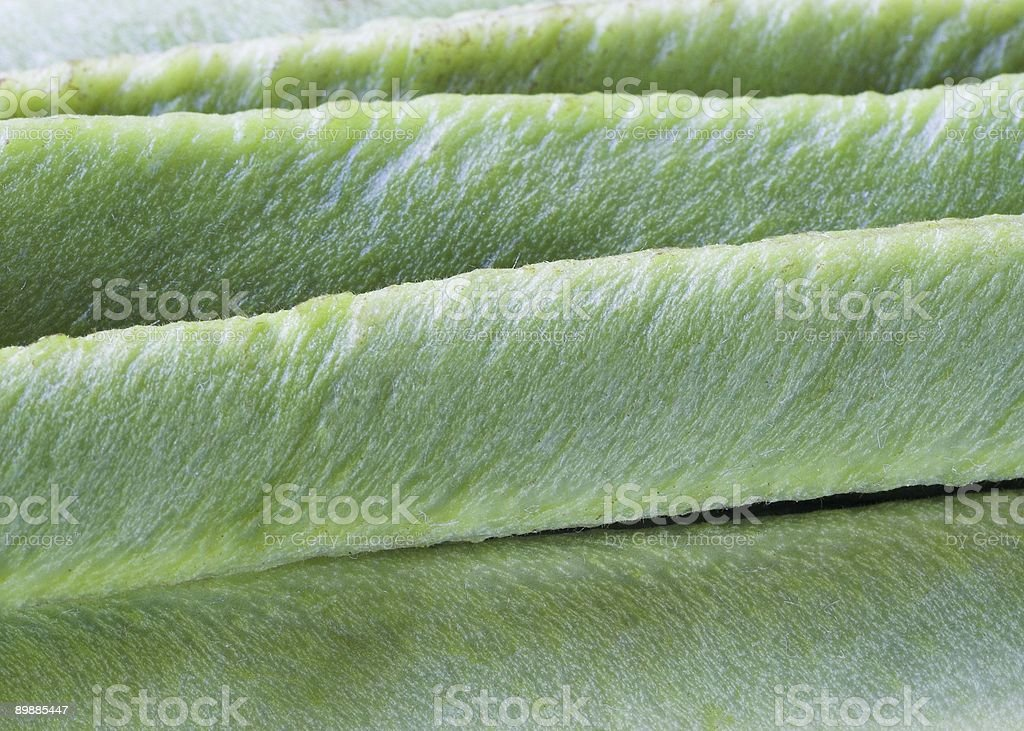Runner Bean Background royalty-free stock photo