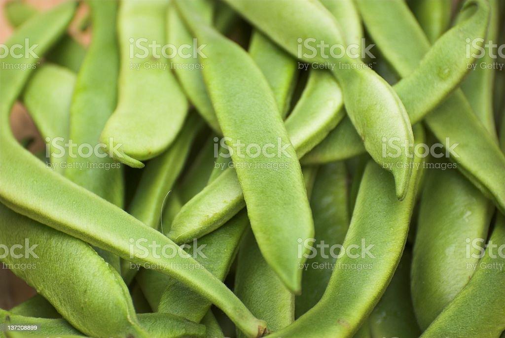 Runner beans. stock photo