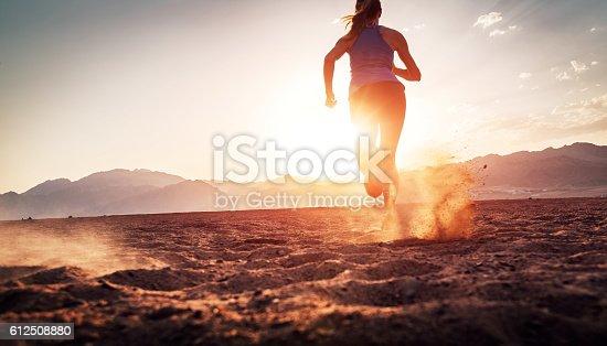istock Runner 612508880