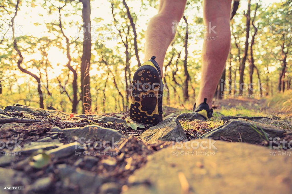 Runner's legs with view of sneakers while in the forest stock photo