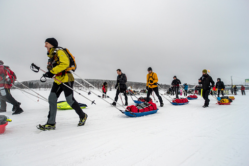 Runners With Pulks In Rovaniemi 150 Adventure Race Stock