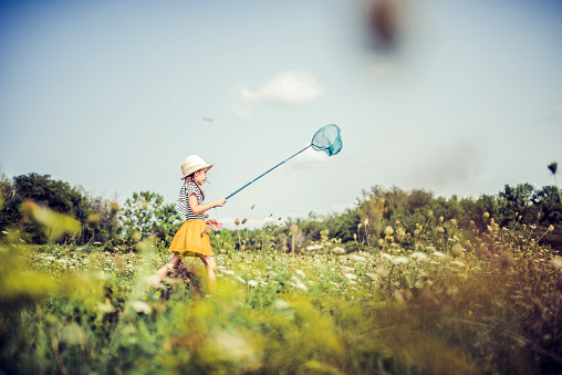 Little girl chasing butterflies in a rural uncultivated field