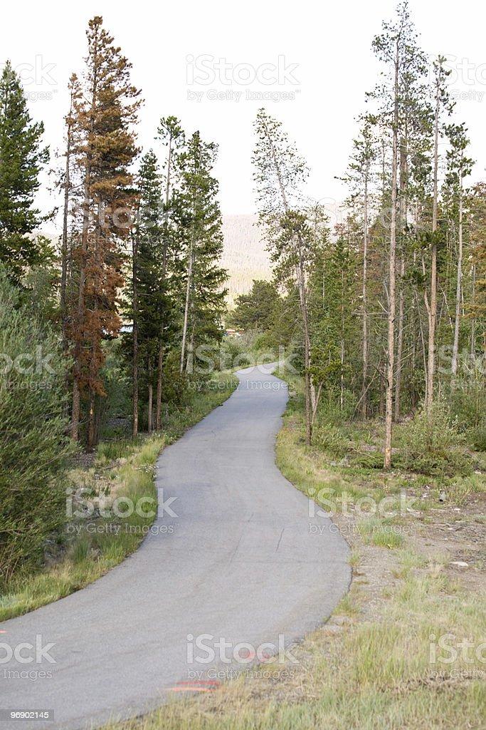 Running and Bike Path Horizontal royalty-free stock photo