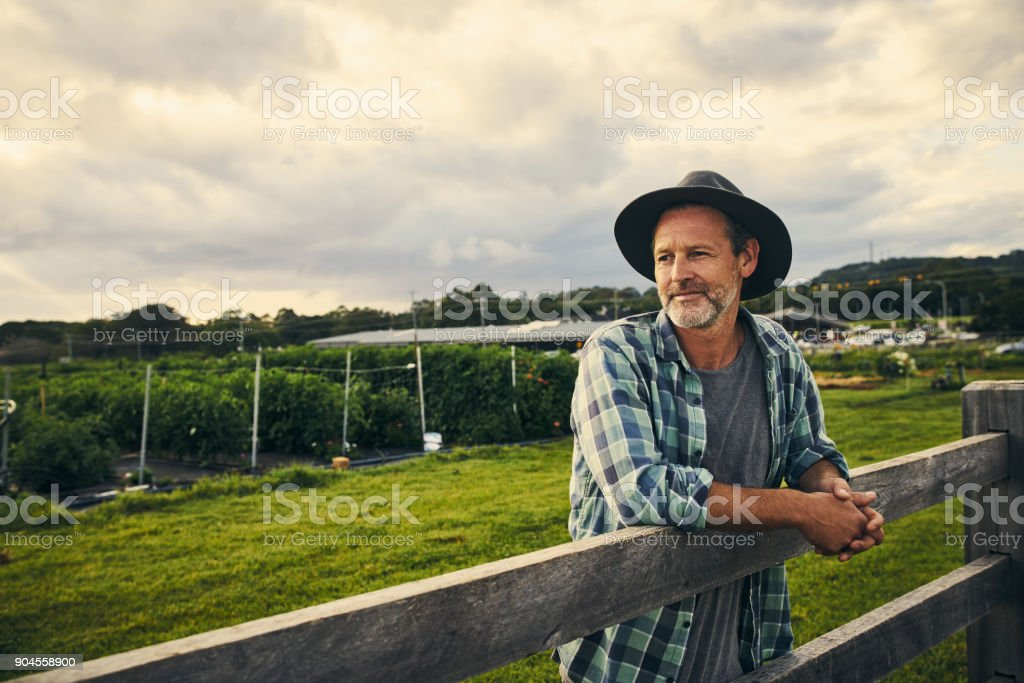 Running his eye over his farm stock photo