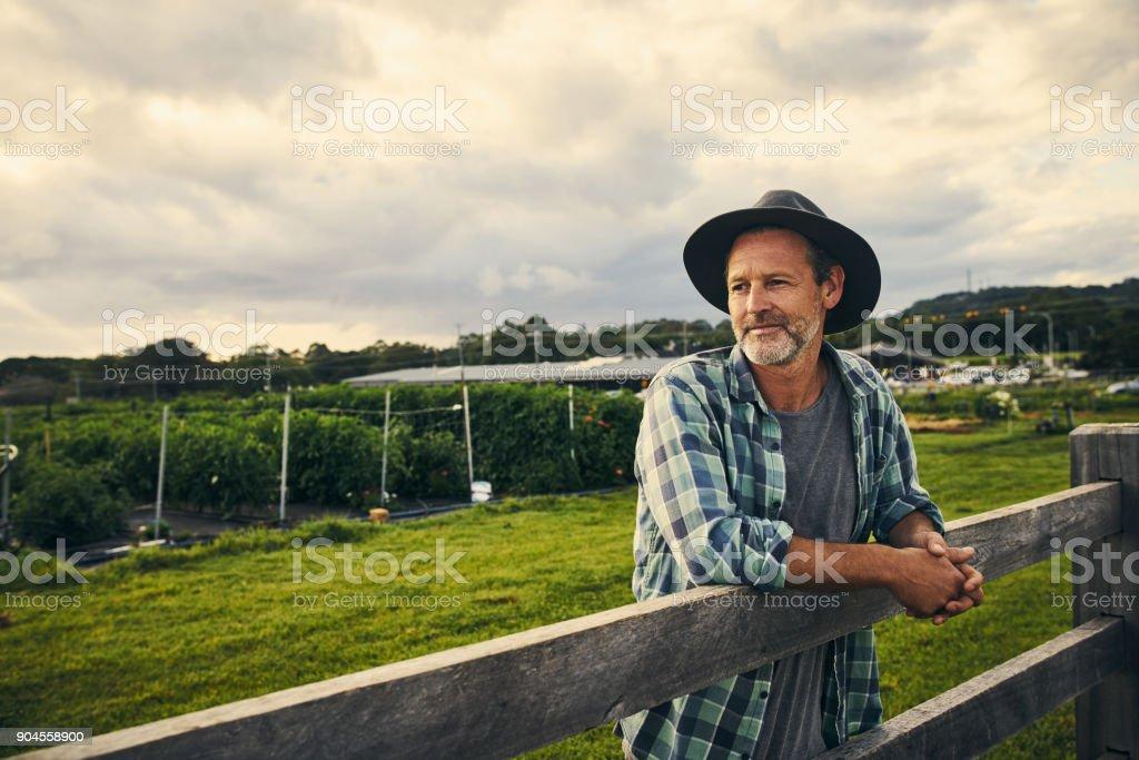 Seine Farm überfahren sein Auge – Foto