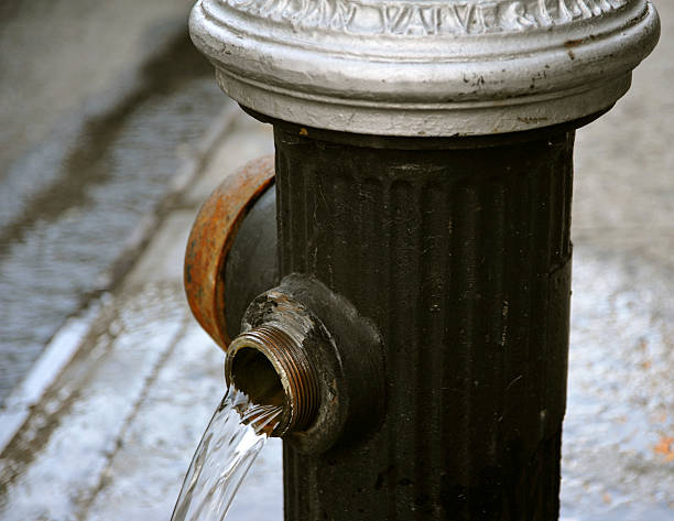 Running Hydrant – Foto