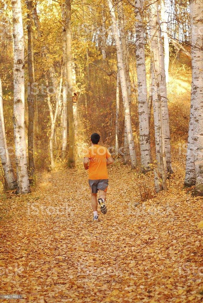 Running in Autumn royalty-free stock photo