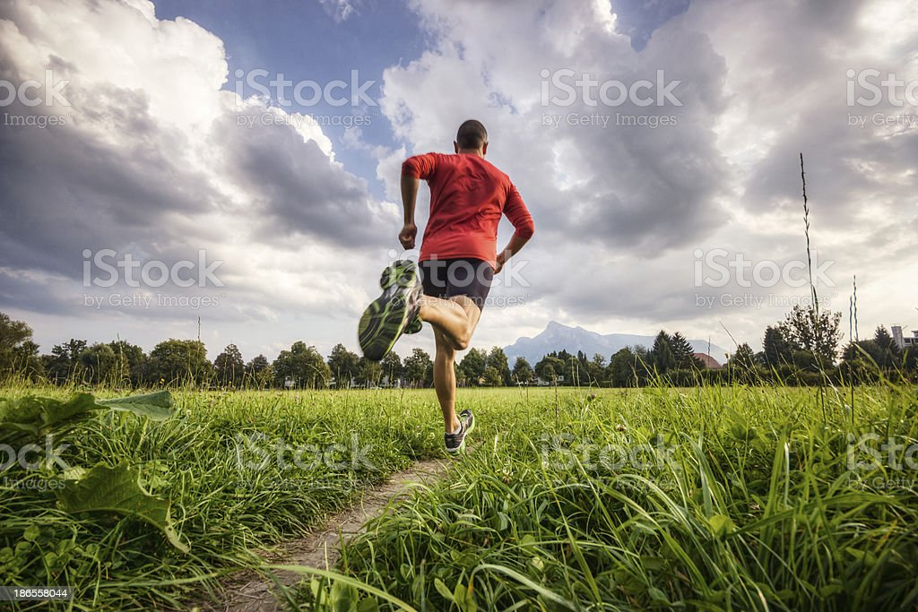 Running in the Alps royalty-free stock photo