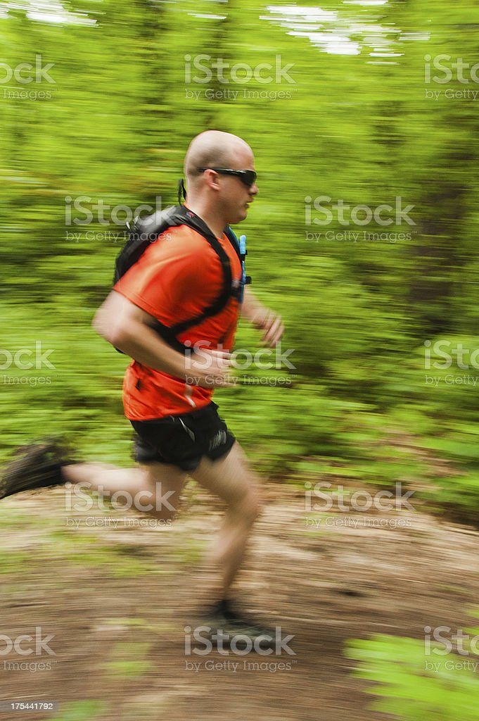 Running in the forest royalty-free stock photo