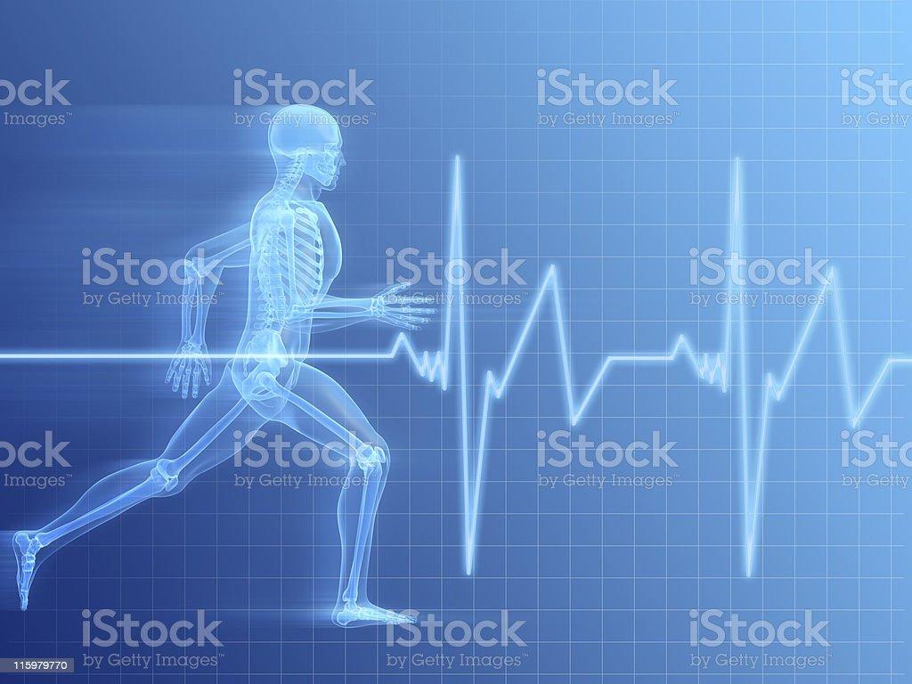 running man - anatomy stock photo