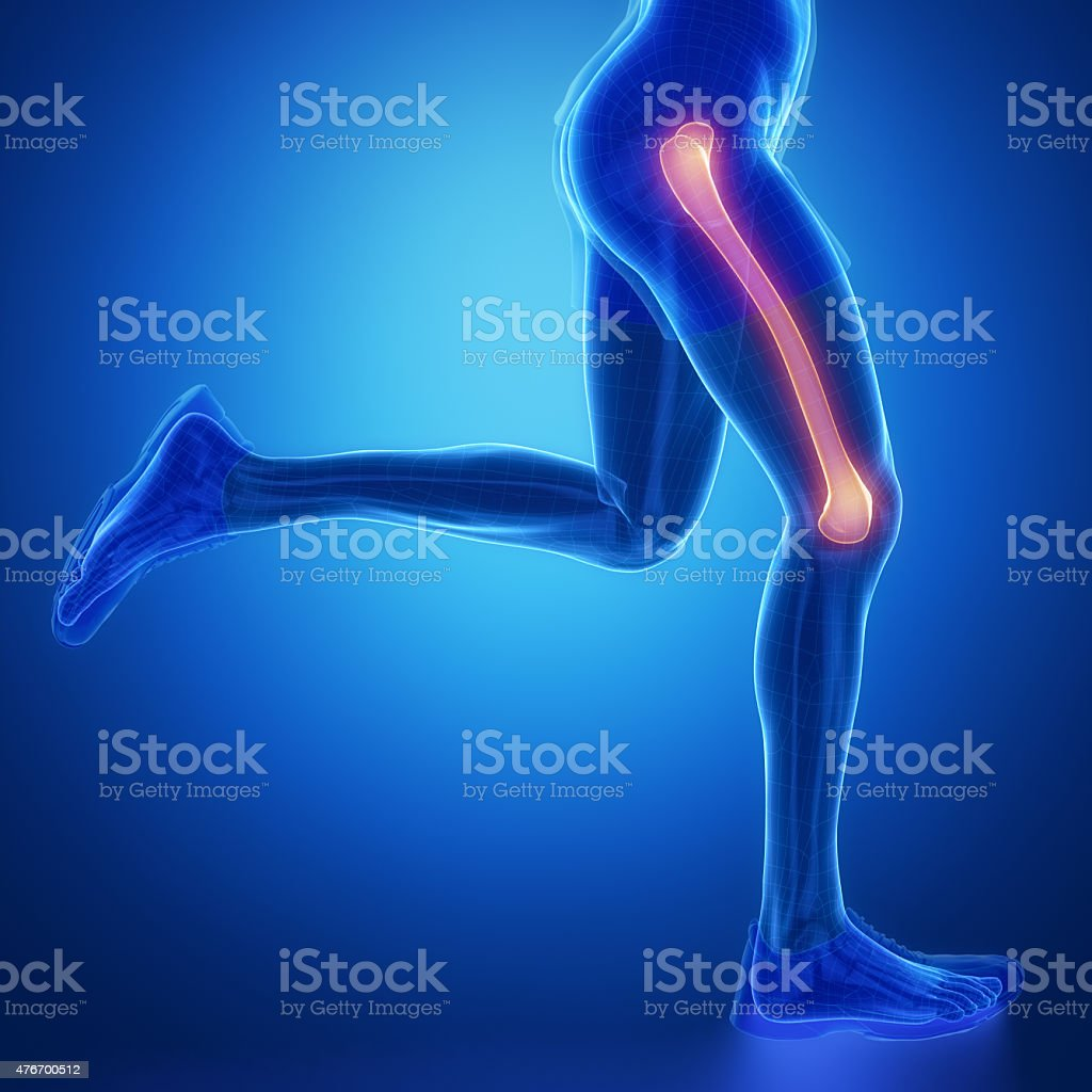 FEMUR - running man leg scan in blue stock photo