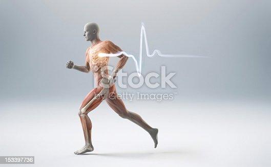 istock Running muscle anatomy man 153397736