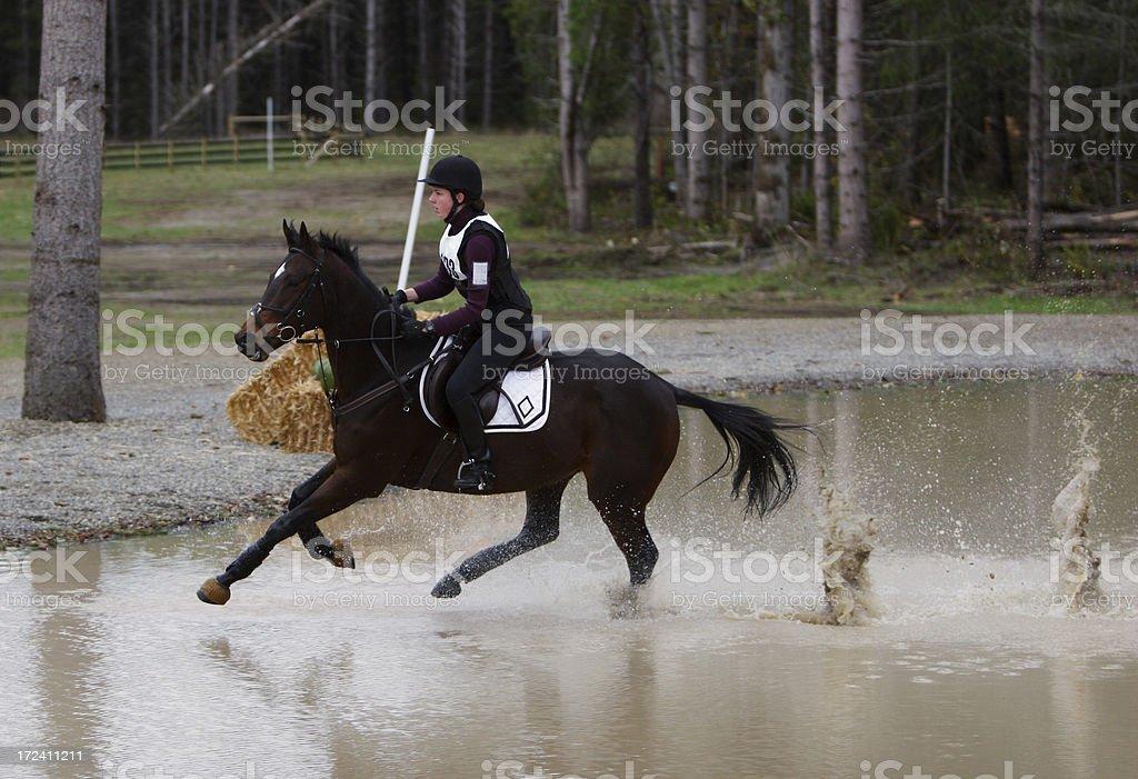 Running on Water stock photo