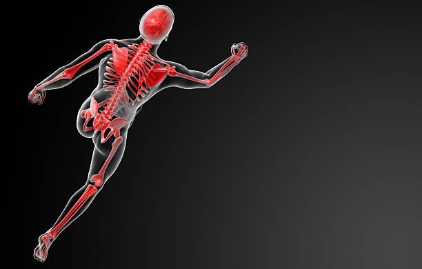 running Skelett von Röntgenapparate in Rot – Foto