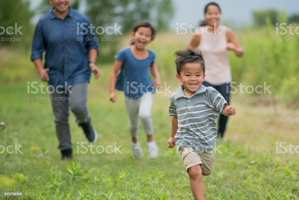Running Through a Grassy Field stock photo