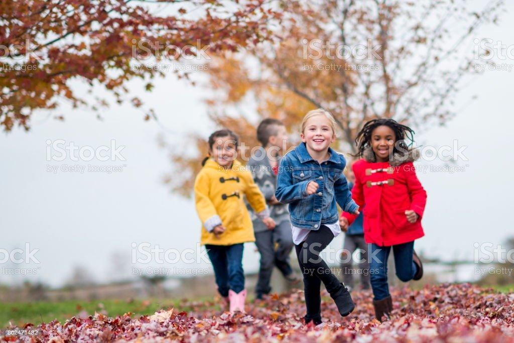 Running Through Leaves stock photo
