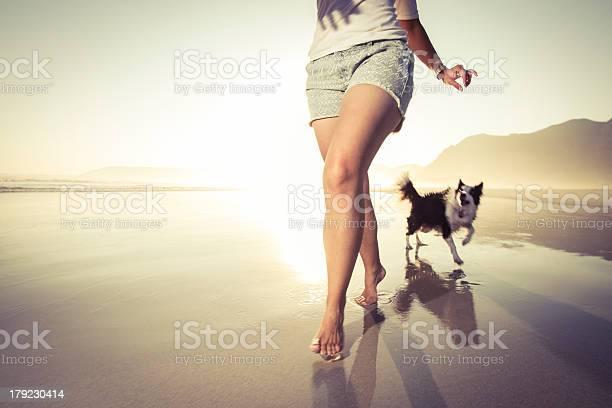 Corriendo Con Mi Mascota Foto de stock y más banco de imágenes de Perro