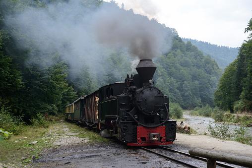 Running wood-burning locomotive of Mocanita (Maramures, Romania). Green forest is in  background.